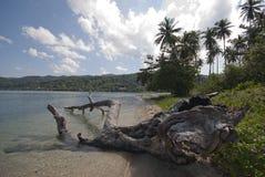 Nai человека Koh, необжитый остров, Trat, Таиланд Стоковые Фотографии RF