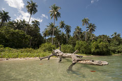 Nai человека Koh, необжитый остров, Trat, Таиланд Стоковые Изображения