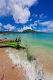 Nai Yang Beach blue cloundy sky with old tree on the beach Phuket,Thailand, Royalty Free Stock Photo