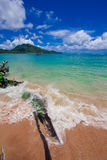 Nai Yang Beach blue cloundy sky with old tree on the beach Phuket,Thailand, Stock Photography