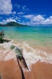 Nai Yang Beach blue cloundy sky with old tree on the beach Phuket,Thailand, Stock Photography