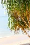 NAI YANG Beach i den Phuket ön, Thailand arkivfoton