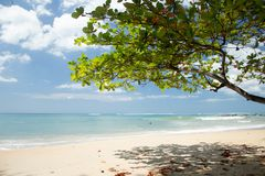 NAI YANG Beach nell'isola di Phuket, Thailand-3 fotografia stock libera da diritti