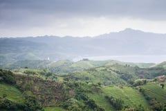 Naidi Hlls, Batanes, Filippijnen Stock Afbeelding