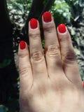 Nail& x27; Красный цвет s стоковые изображения