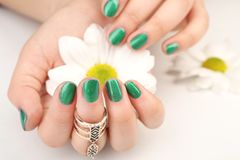 Nail art concept. Beautiful female hands with manicure holding flower. Closeup Stock Photos