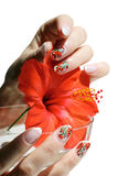 Nail art design. Beautiful nail design. Woman hands with hibiscus on white background Stock Photography