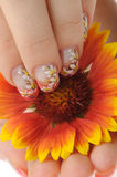 Nail art and flower royalty free stock photos