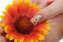 Nail art and flower Royalty Free Stock Images