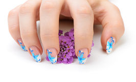 Nail art and flower. Nail art. Female nails with figure of petal blue color closeup and flower Stock Image