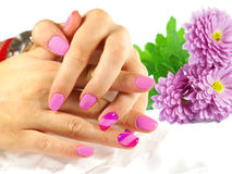 Nail Art . Nail Designs. Nail Art, Purple Nail Designs with purple chrysanthemums on background Stock Image