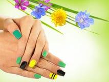 Nail Art . Nail Designs Stock Images