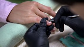 Nail artist in gloves removing nails cuticle, beauty salon procedure, spa. Stock photo royalty free stock image