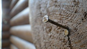 A nail in the beam. A A nail in the beam Stock Photography