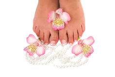 Nail care for women's feet Stock Images