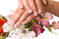 Nail care for women's hands Royalty Free Stock Photo