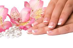 Nail care for women's hands Royalty Free Stock Image