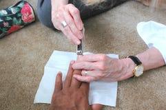 Nail Clipping Royalty Free Stock Image