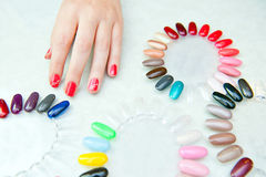 Nail color choosing Stock Image