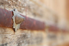 Nail decoration in a old door. Detail of a rusty nail in an old wooden door Stock Images