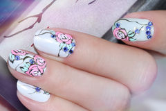 Nail design . Manicure nail paint . Stock Photos
