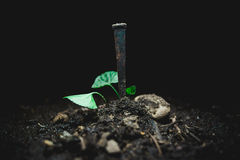 Nail in the dirt Royalty Free Stock Photos