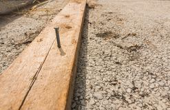 A nail on the wood. A nail embedded in the timber on the cement royalty free stock photography