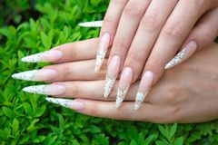 Nail extension. Female hands - Decorative artificial nails royalty free stock images