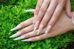 Nail extension Royalty Free Stock Photo