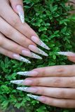 Nail extension. Female hands on the grass - nail extension stock photo