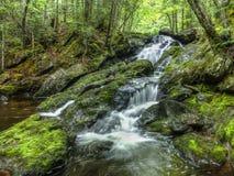 Nail Factory Falls, Kingston Peninsula, New Brunswick. Nail Factory Falls cascades in late spring royalty free stock image