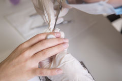 Nail master in rubber gloves make manicure care cuticle on a w. Oman hand finger nail. Healthcare beauty cosmetic spa procedure in a salon Stock Photo