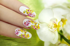Nail with a pattern of colored orchids. Stock Photos