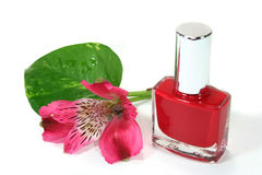 Nail polish. With leaves and flowers royalty free stock images