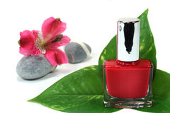 Nail polish. With flowers, leaves and stones stock images