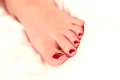 Nail polish. Woman feet with red nail polish isolated on white background Royalty Free Stock Photography