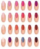 Nail polish collection. Stock Image