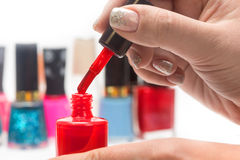 Nail polish and female hands Royalty Free Stock Photography