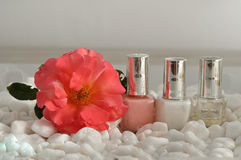 Nail polish for a French manicure Royalty Free Stock Photo