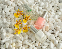 Nail polish for a French manicure Stock Photography