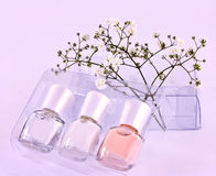 Nail polish kit. A set of nail polish bottles with dried flowers Stock Photos