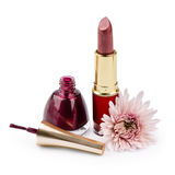 Nail polish, lipstick and flower Stock Photos