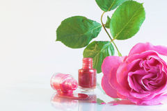 Nail polish and rose flower stock photo