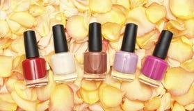 Nail polish in rose petals Stock Photos