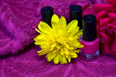 Nail polishes with flowers Royalty Free Stock Image