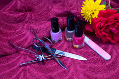 Nail polishes and manicure set with flowers Royalty Free Stock Photography