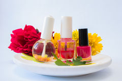 Nail polishes on a plate Stock Photography