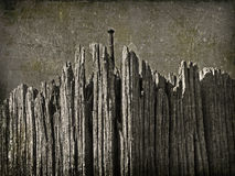 Nail in the rotten plank Stock Photography