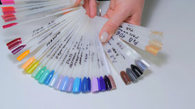 Nail technician shows the color palette of nail services in beauty salon royalty free stock images