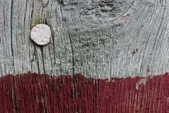 Nail in wall Stock Image